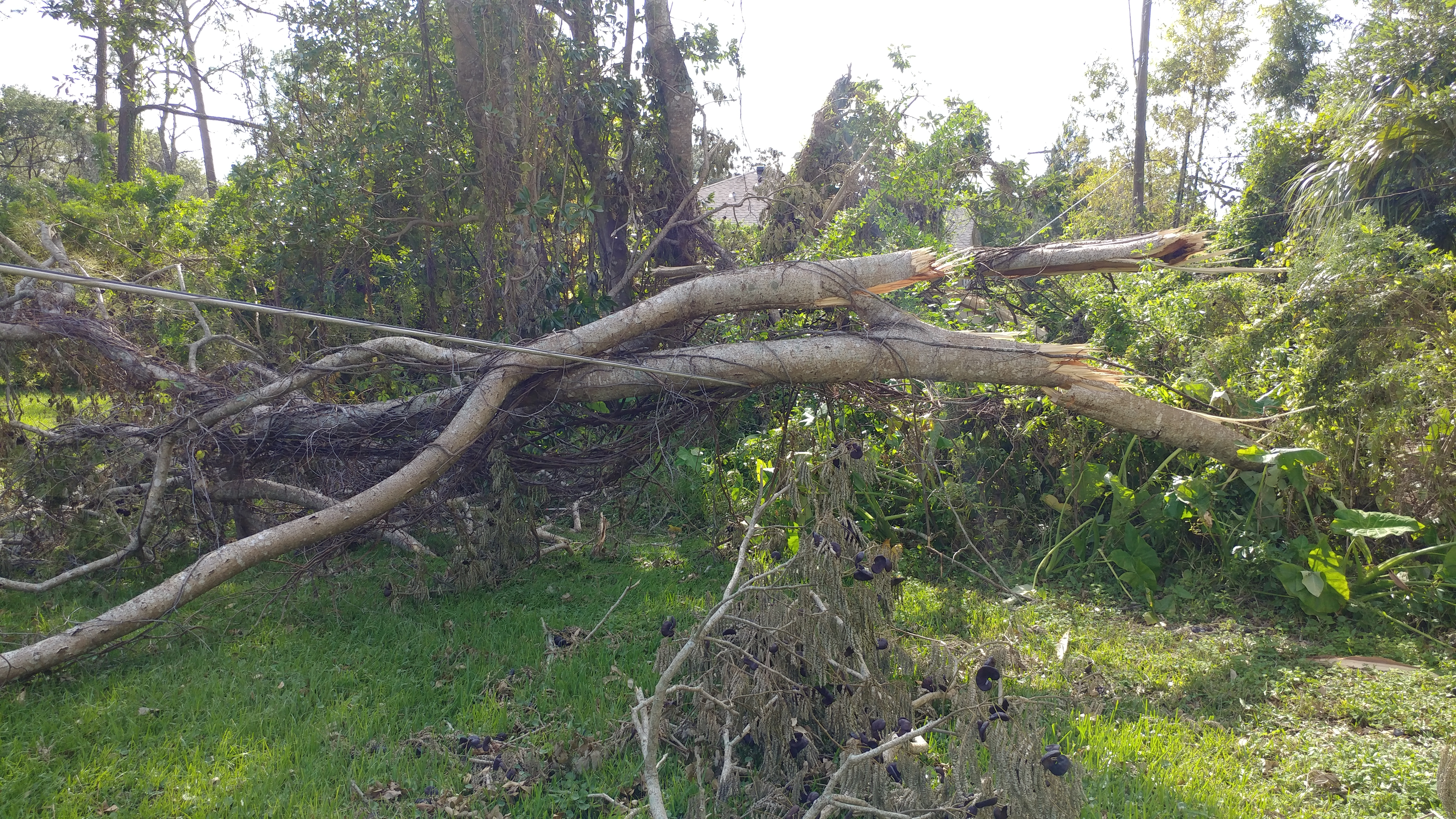 diocese releases hurricane irma damage report the episcopal